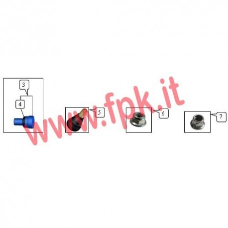 Vite + O-ring di Sicurezza (figura 3+4)