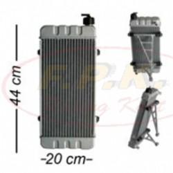Radiatore completo di attacchi 44x20