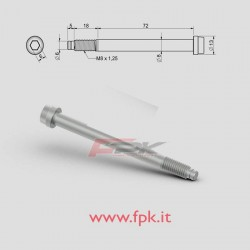 VITE PER FUSELLO diametro 10mm M10 L.72+18mm