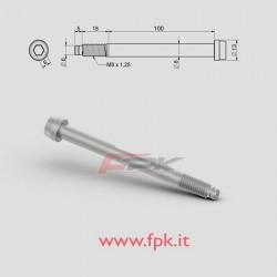 VITE PER FUSELLO D.8mm M8 L.100+18mm