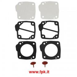 Kit di Revisione per Pompa Benzina Dell'Orto P34 PB2.
