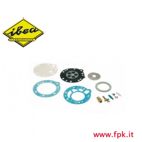 Kit revisione Ibea completa