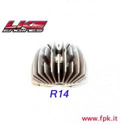 1 Fig Testa R14 VO