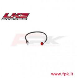 301 Fig Pulsante rosso