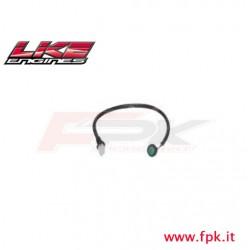 302 Fig Pulsante verde