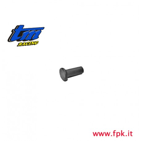 012 Fig Chiodo  Ribattino  6.9 mm
