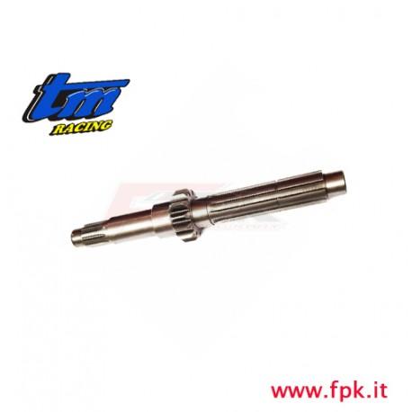 005 Fig ALBERO PRIMARIO K9 Z 13