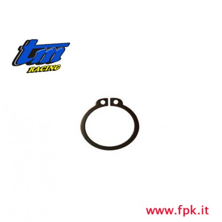 009 Fig SEEGER Diametro 20