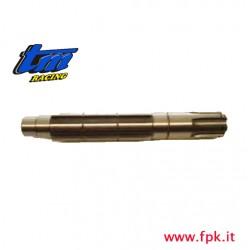 009 Fig ALBERO SECONDARIO K9