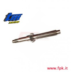 004 Fig ALBERO PRIMARIO Z 13 KZ10