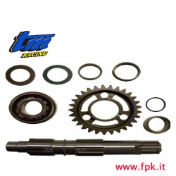 042 Fig KIT ALBERO SECONDARIO KZ10 B D.21 MODIFICATO